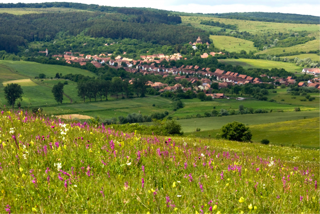 The landscape can only be kept alive by working with local farming communities